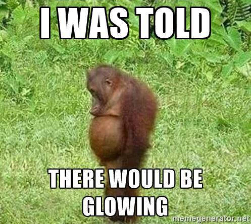 orangutan-stan-i-was-told-there-would-be-glowing